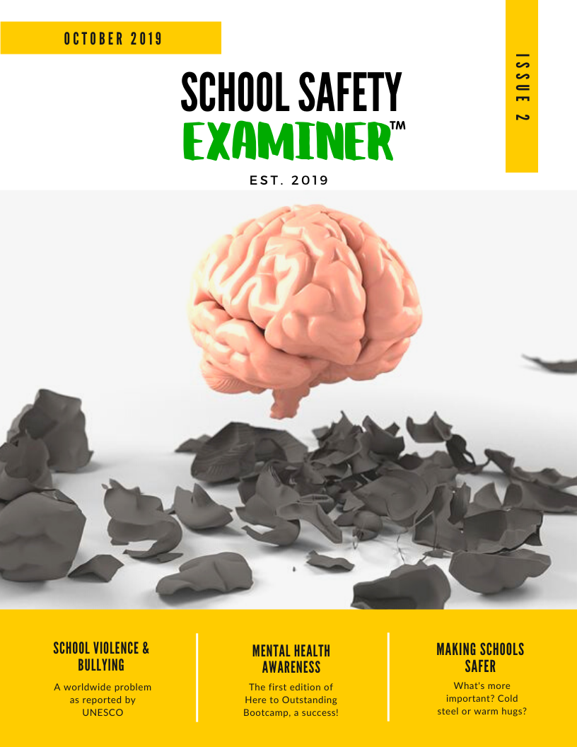 School Safety Examiner Issue 2